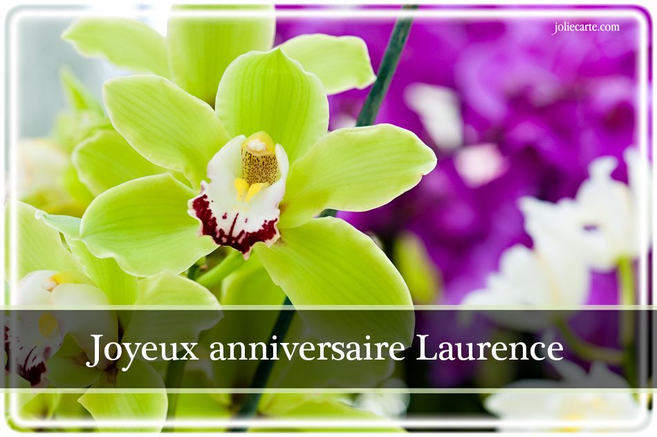 Carte Anniversaire Laurence Moderne